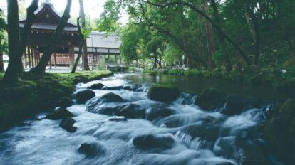 京都最古の神社が守る水と出会い、完成した究極のジャパニーズコーヒー「神山湧水珈琲」の魅力