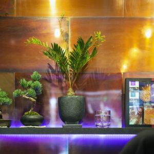松﨑さん自らが店舗のデザインも担当。新店のテーマカラーは、ブランドカラーである赤(えんじ色)と松陰神社前店のテーマカラー青(藍色)を融合させた紫。