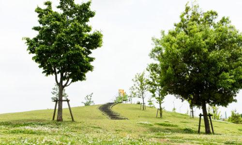 東伏見公園_3