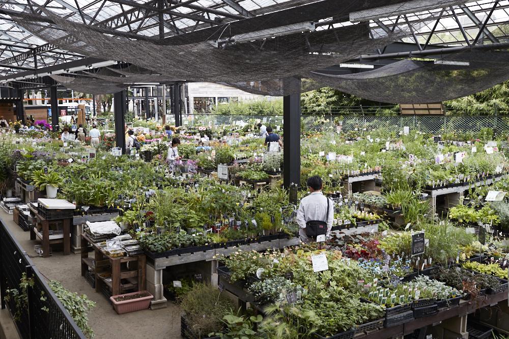 1Fの屋外にある「Outdoor Garden」。野菜の苗から庭用品まで、ガーデニングに関するありとあらゆるものがそろう。