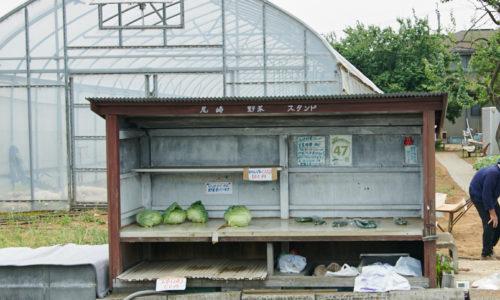 〈オザキフラワーパーク〉の北駐車場のすぐ裏にある、野菜直売所。旬の野菜がどれも100円で購入できるとあって、近所の方に大人気。〈グロワーズカフェ〉で使う野菜もここから購入することもあるそうです。