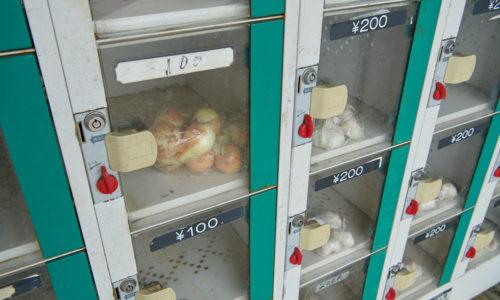 にんにくや玉ねぎなどはこちらのロッカーで販売しています。ロッカーにお金を投入して購入します。お昼過ぎにはすべて売り切れてしまうこともあるそう。購入したい場合は朝イチに行くのがおすすめ。