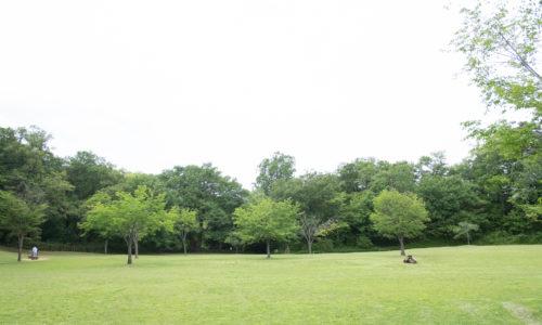 「ちょうどいいサイズ感の公園のなかに、広い芝生と湖の開放感。のんびり、ボーッとできる場所です」と山田さん。春のサクラ、秋のイチョウなど、季節ごとの植物も目の保養になります。