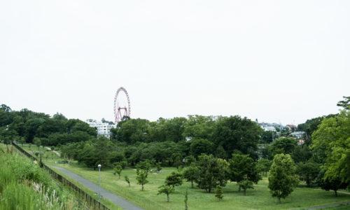 狭山丘陵にある5つの都立公園のうちのひとつ。鬱蒼とした雑木林、芝生の広場、大きな池と、さまざまな景観を擁しています。多摩湖に面していて開放感もたっぷり。