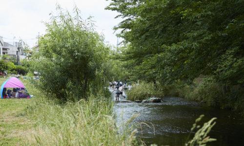 夏場には、近所の子どもたちが豪快に入水して遊ぶ姿が見られます。もちろん真之介さんご夫妻も「川に飛び込んだり、ザリガニをとったり、ヒルに咬まれたり(笑)」と、幼少時にはここでよく遊んでいたそう。