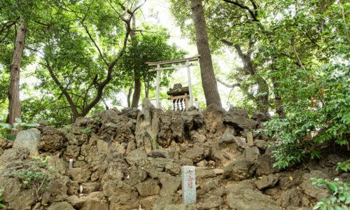 国の重要有形民俗文化財に指定されている、高さ約8メートル、直径約30メートルの「江古田の富士塚」(通称:江古田富士)。普段は立ち入り禁止で、正月三が日、7月1日の山開き、9月の第2土・日曜のみ登拝できます。