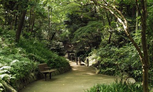 江戸時代には、将軍家の狩猟地だったというこのエリアは、立ち入り禁止という意味で「御留山(おとめやま)」と呼ばれていました。小高い山には雑木林に囲まれ、森林浴が楽しめる西側と、東側には大きな池があり、そこかしこにのんびりすごせる東屋やベンチが配されています。