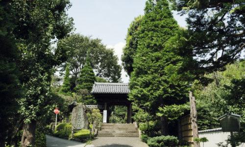 隣には下落合野鳥の森公園が、歩いて7分ほどでおとめ山公園もあり、都心とは思えない自然豊かな場所。お散歩にもぴったりなエリアです。■住所:東京都新宿区下落合4-8-2 ■電話番号:03-3951-4324 ■開門:9:00〜17:00