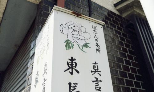 鎌倉時代に開山された、真言宗豊山派の寺院で「東長谷寺」とも呼ばれます。総本山である奈良の長谷寺から牡丹の花が100株ほど移植され、現在では約40種、1000株にも増え、別名「牡丹寺」と呼ばれています。