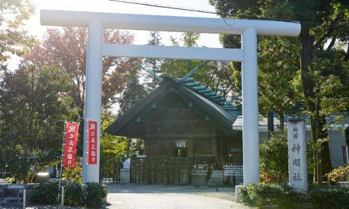 旧所沢町の鎮守として、地元民の憩いの場にも。市内で最も大きいケヤキの木が静かに見守っています。住所:埼玉県所沢市宮本町1-2-4 電話番号:04-2922-3919  https://www.shinmeisha.or.jp/