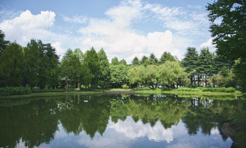 彩の森 入間公園