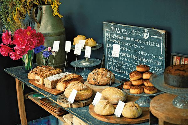 眺望著肉桂樹品嚐麵包