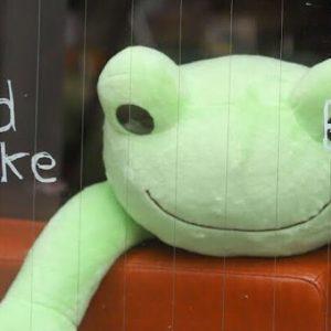 在小青蛙相伴的自家煎焙咖啡館享受平靜片刻〈kAEru coffee〉