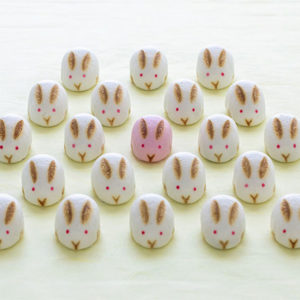 京都和菓子始祖〈虎屋〉的悠長歷史及可愛的「兔子饅頭」。