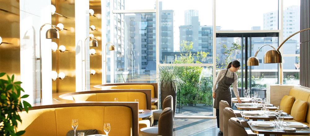 【東京】小資族的荷包救星!座落於代官山街道之中,價位親切的米其林料理——COTEAU.