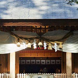 【三重】在清新冷冽的山林空氣中,走進被可愛山茶花主題環繞的「椿大神社」
