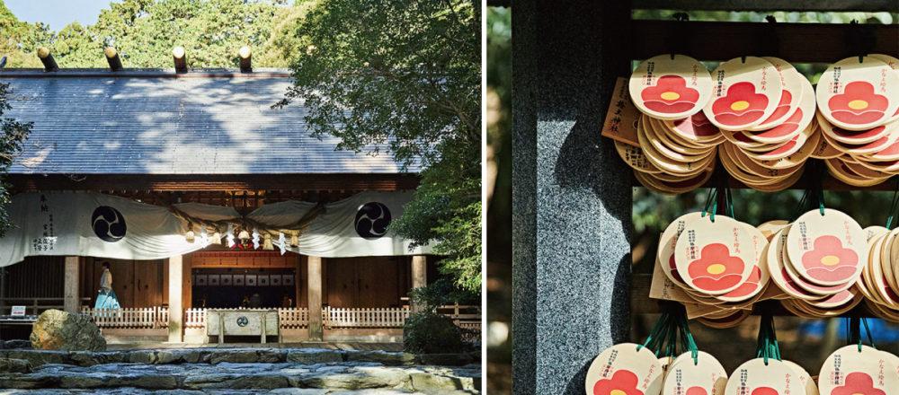 【三重】在清新冷冽的山林空氣中,走進被可愛山茶花主題環繞的「椿大神社」——Hanako Taiwan