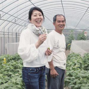 野村友里的「台灣食材探訪之旅」|讓有機農作物變得貼近人們日常的重要推手:248農學市集