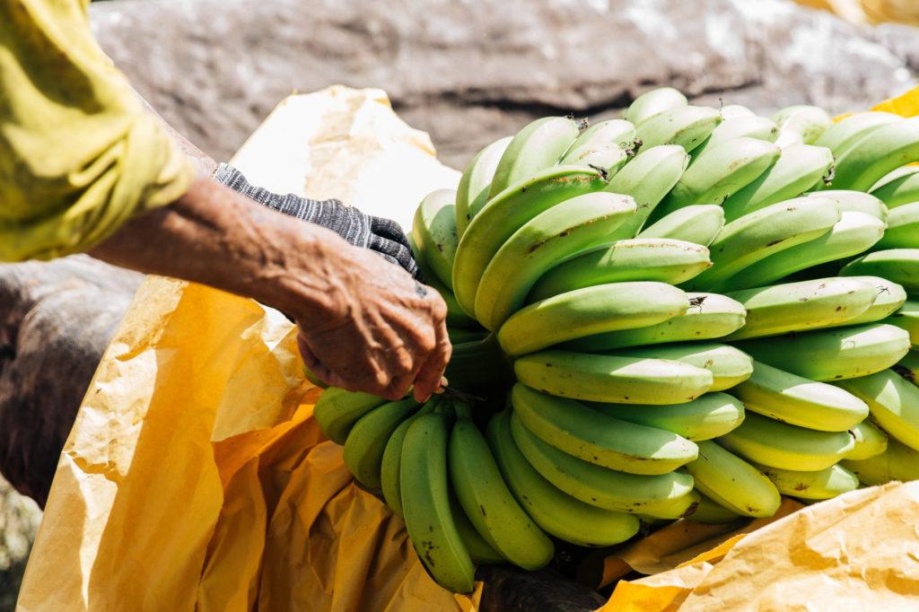 20200620-banana-12