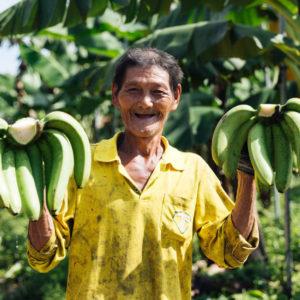 【column】香蕉王國在寶島——香甜Q軟的屏東香蕉