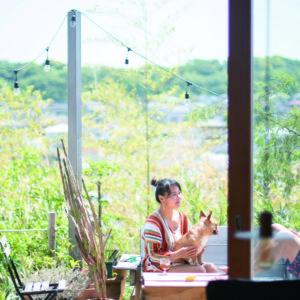 療癒身心的鎌倉景物與人情味