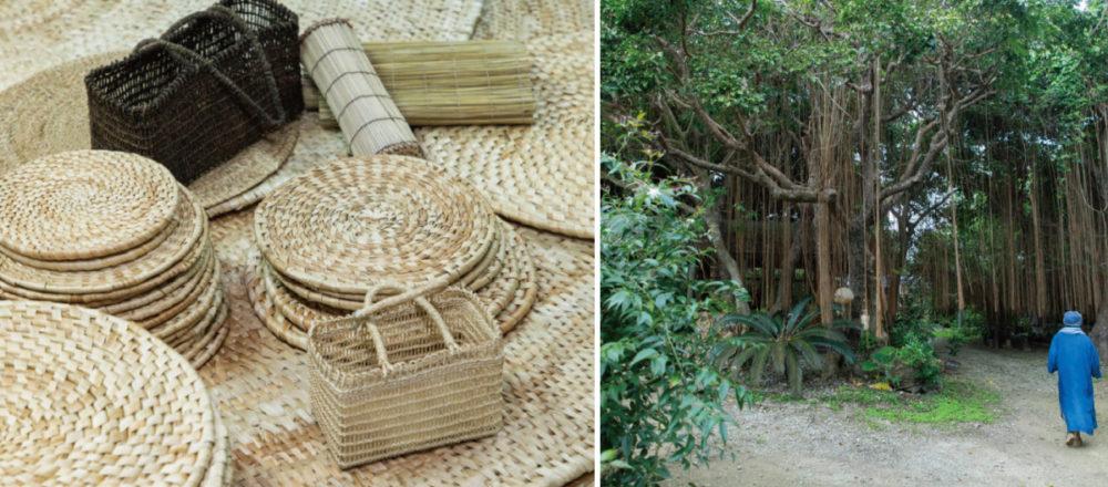 一路走來  始終支持著沖繩民俗工藝的林中秘境——Hanako Taiwan