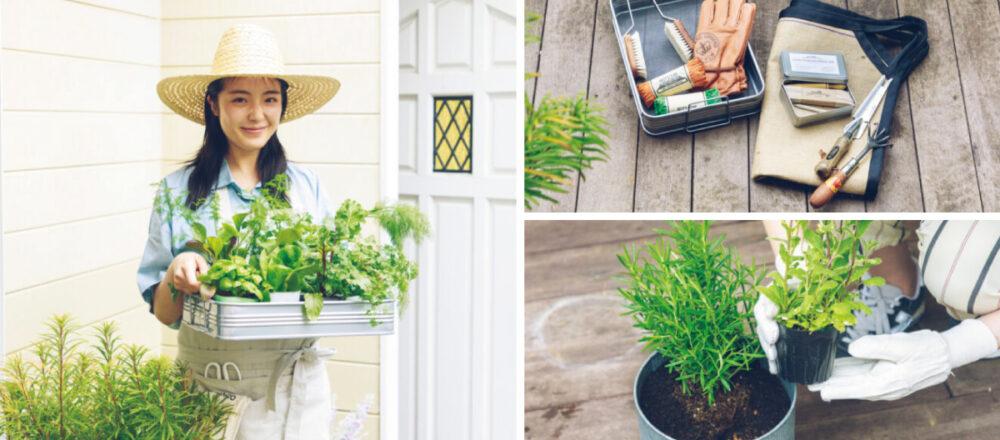 學習當個綠手指,第一次種菜就上手!化身居家小農打造專屬家庭菜園-Hanako Taiwan