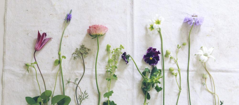 有專家掛保證的7個花束保鮮技巧,讓買回家的鮮花持續繽紛綻放久久-Hanako Taiwan