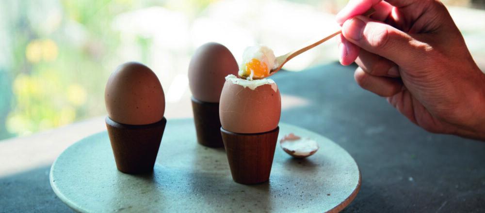 日本雞蛋超好吃的秘密!「ROOSTER」孵化嶄新雞蛋,美味之中深深蘊藏著農場主人的心意-Hanako Taiwan