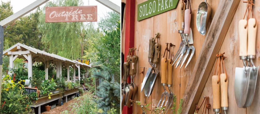 「SOLSO FARM」竟然只限週末開放!一座被花草植物包圍的體驗型園藝農場,備受綠手指青睞的主題樂園-Hanako Taiwan
